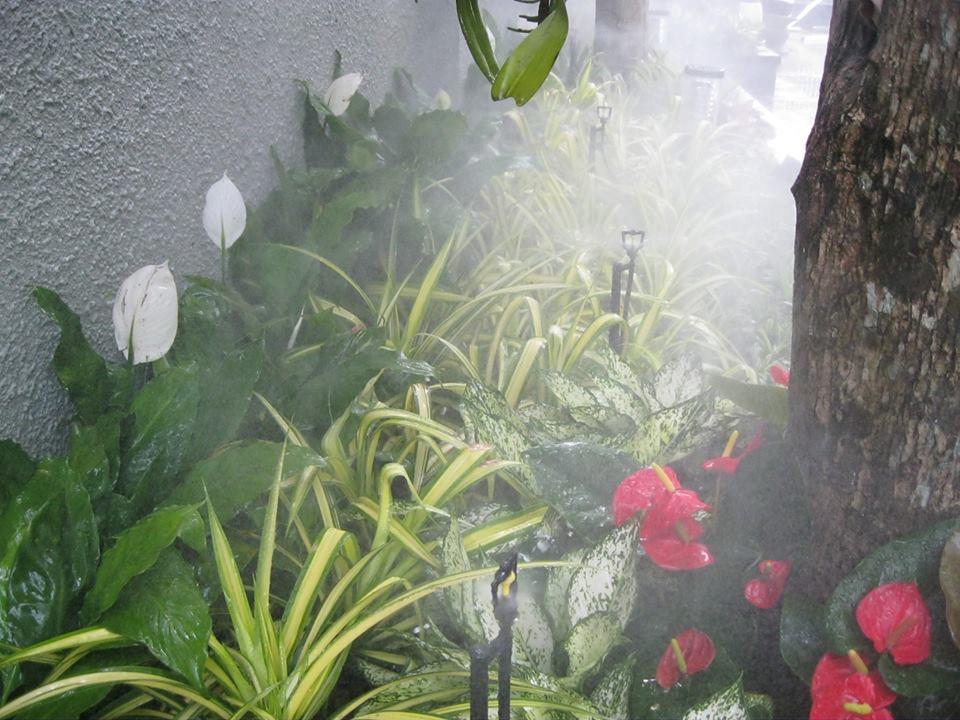 Vòi tưới phun sương được lắp đặt tại Ciputra