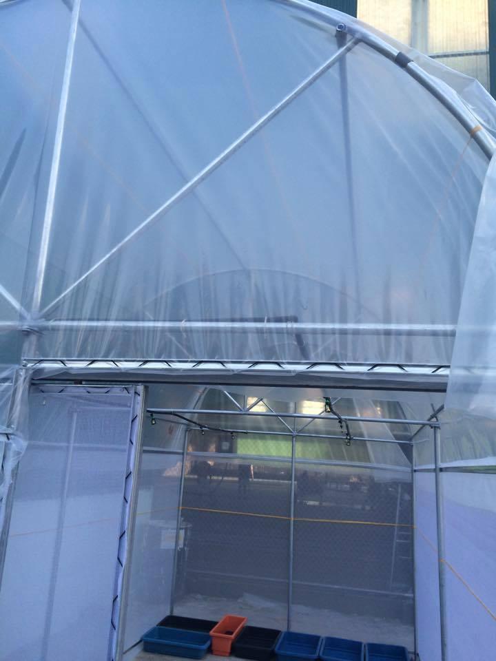 voi tưới phun sương lắp trong nhà kính trồng rau