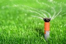 Hệ thống phun nước tưới cây cho hộ gia đình và hộ chuyên sản xuất nông nghiệp