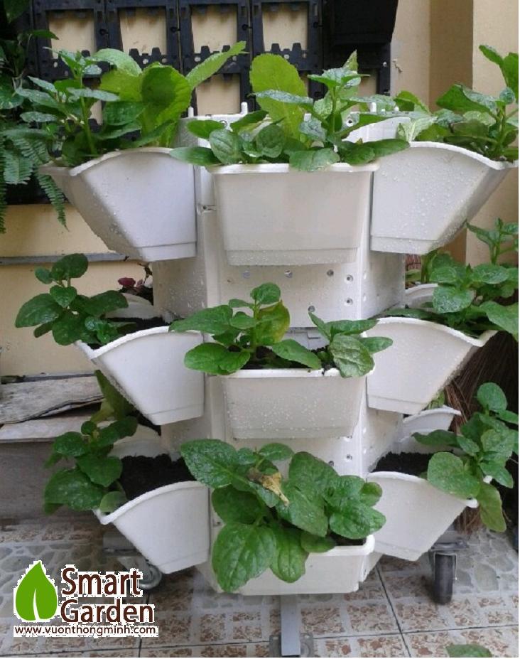 Giá kệ trồng rau 6 cạnh