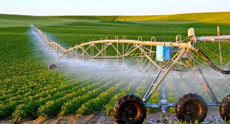 Nên kiểm soát tưới tiêu để tăng sản lượng lương thực cho ngành nông nghiệp