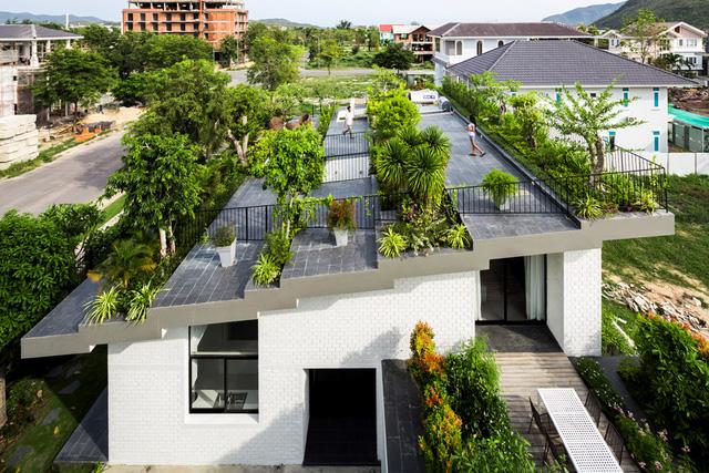 Vườn trên sân thượng xu thế của sống xanh sống an toàn