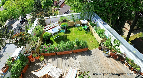 Vườn trên mái không chỉ là giải pháp chống nóng