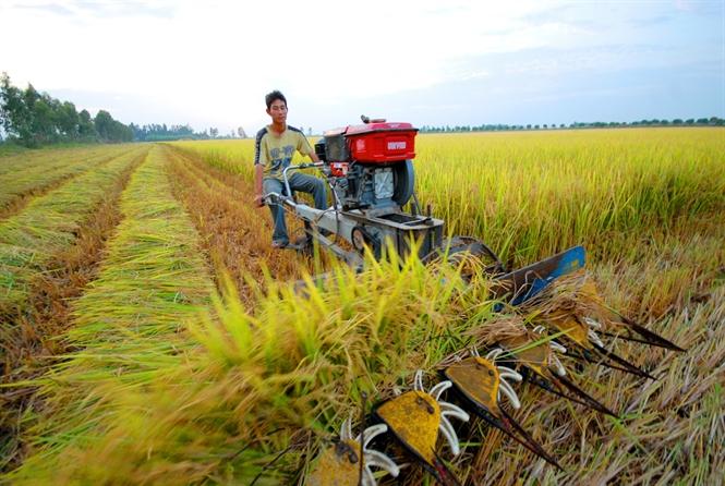 Cơ giới hóa trong canh tác cây trồng ở Việt Nam