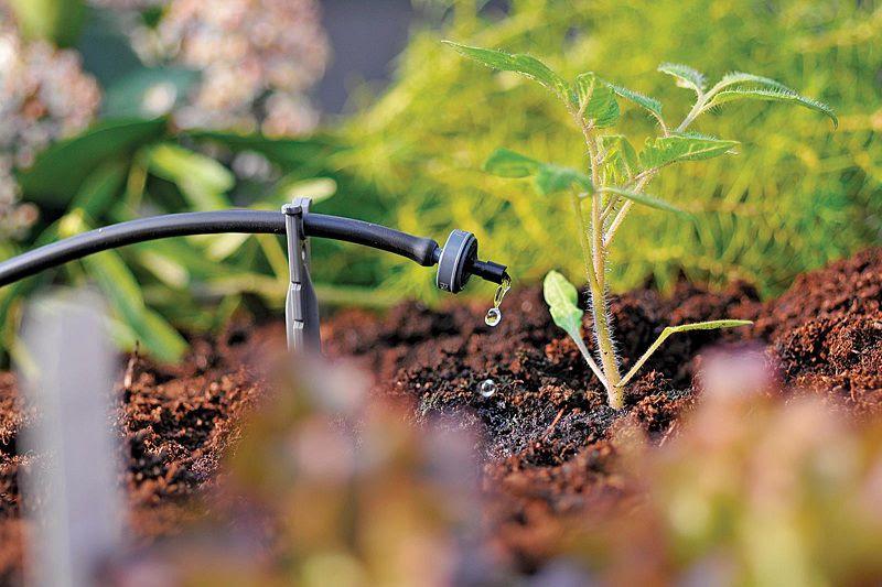 Lắp đặt hệ thống tưới nhỏ giọt dễ hơn với Smart Garden