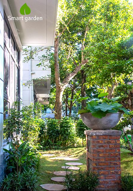 Sân vườn nhà chị Minh