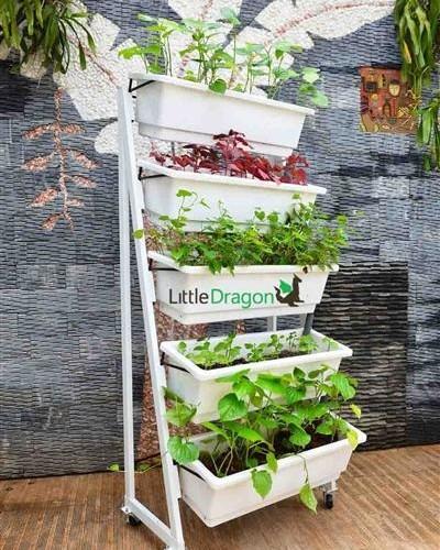 Bộ trồng rau tại nhà-CN1375