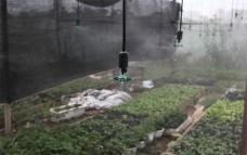 Hệ thống tưới phun sương 4 cửa-(1000m2)