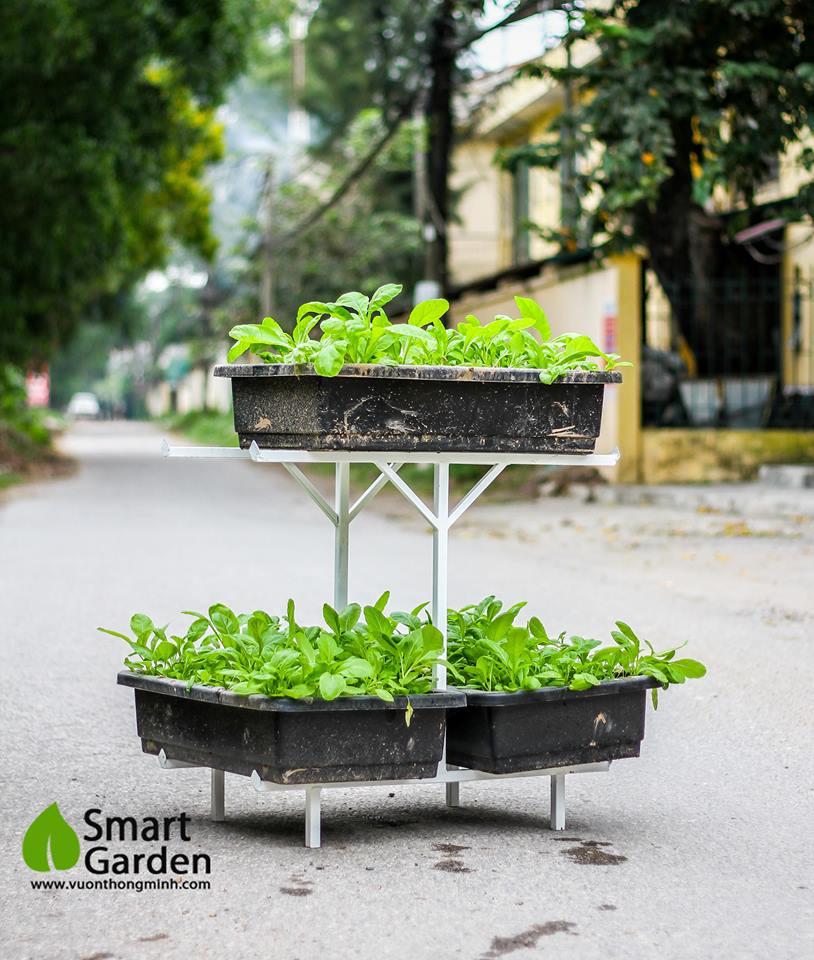 giá đỡ trồng rau
