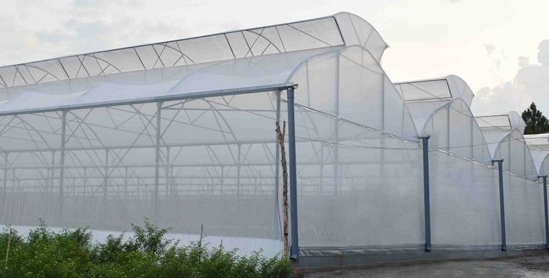 nhà màng nông nghiệp
