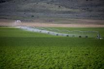 Sự phát triển vượt trội của các thiết bị nông nghiệp thông minh