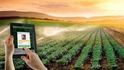 Tính tự động hóa trong các mô hình nông nghiệp thông mình