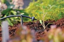 Các Giải pháp sử dụng hiệu quả nguồn nước trong nông nghiệp