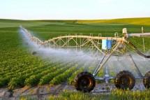Những sản phẩm thông minh trong nông nghiệp