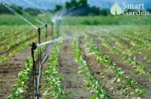 Chọn nguồn nước tưới phù hợp cho cây trồng