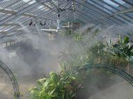 Tầm quan trọng của cảm biến ẩm trong hệ thống tưới phun sương tự động