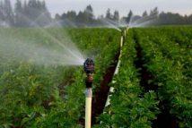 Tối ưu hóa chi phí nhờ hệ thống tưới nước tiết kiệm