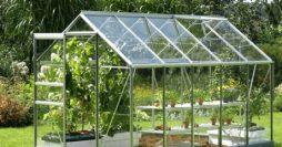 Chi phí làm nhà kính trồng rau – điều băn khoăn của mọi nhà nông