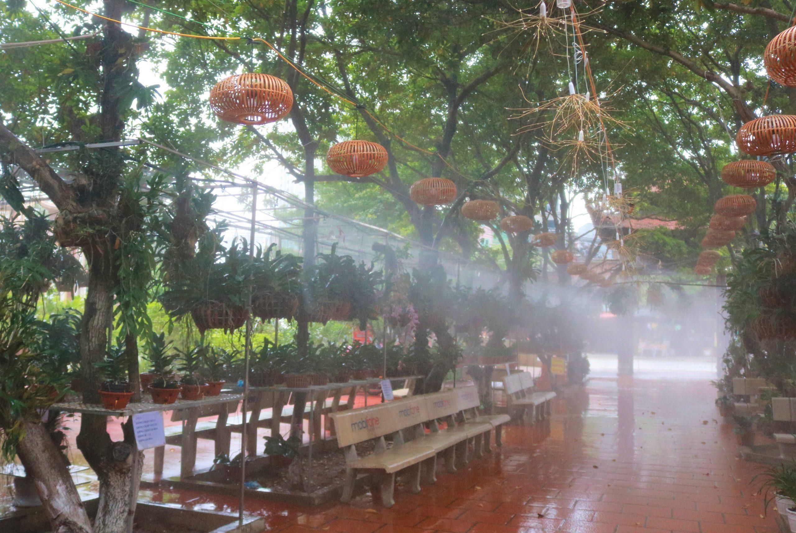 tưới tự động vườn lan ở Chùa Ngòi